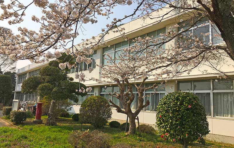 国際協力日本語学院の外観